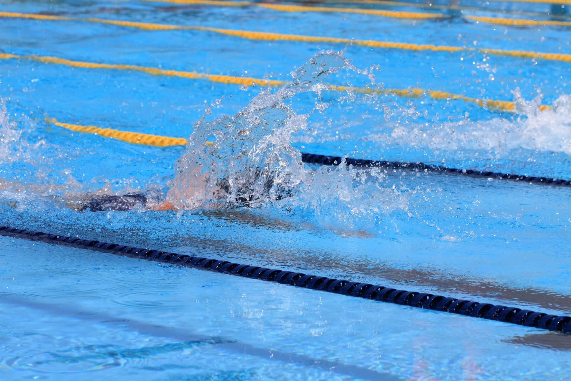 栃木県身体障害者水泳協会(栃木とびうお)