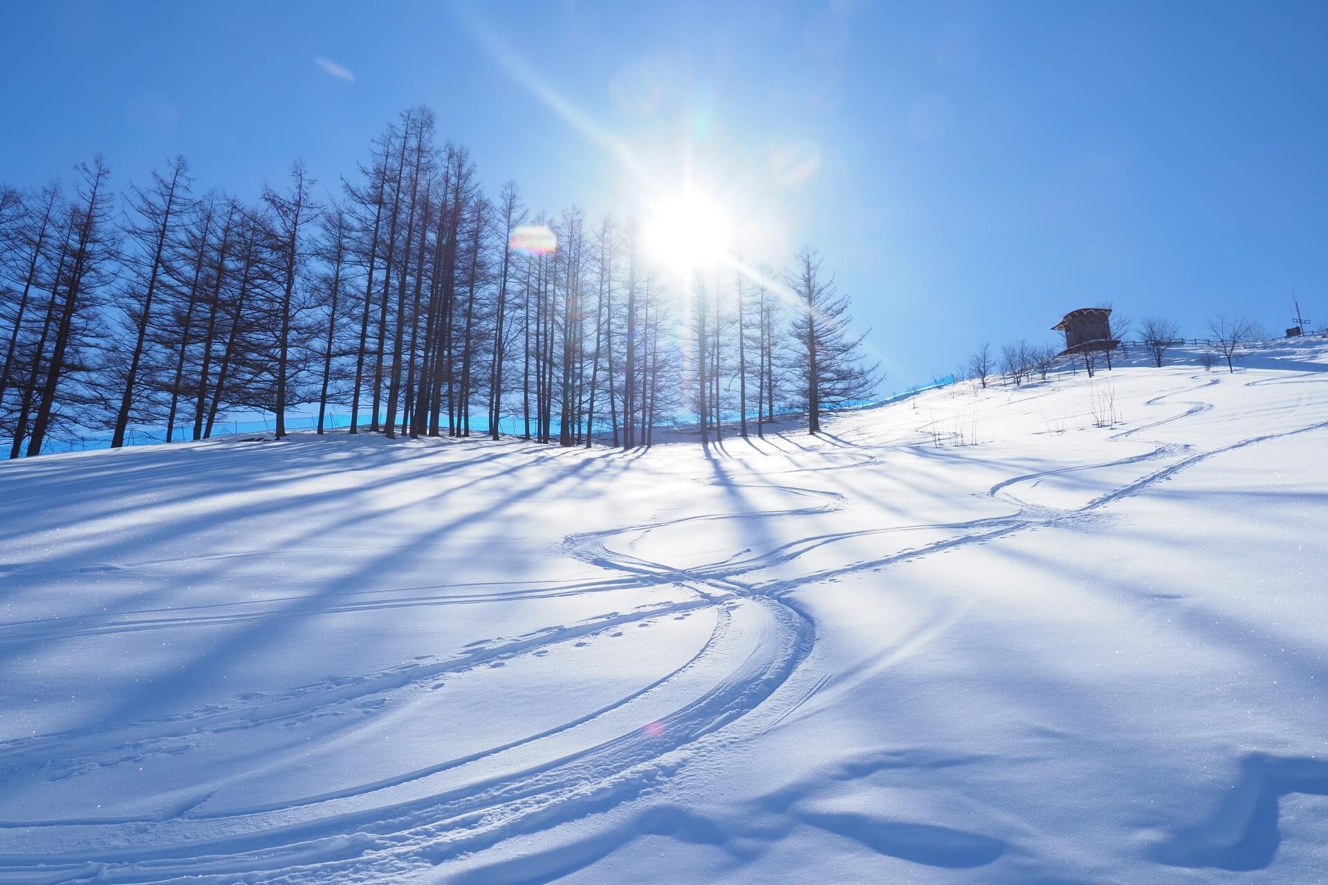 栃木県障害者スキー協会